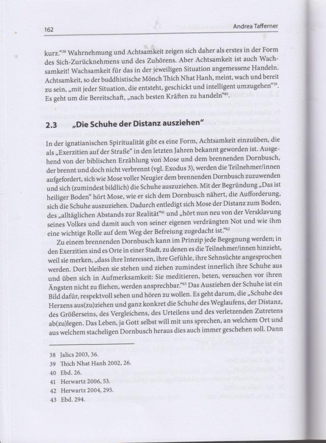 Aufsatz Andrrea 7